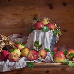 Пазл онлайн: Урожай яблок