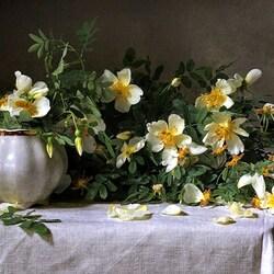 Пазл онлайн: Цветущий май