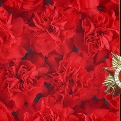 Пазл онлайн: Цветы Победы