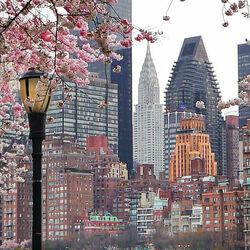 Пазл онлайн: Весна в Нью-Йорке