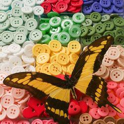 Пазл онлайн: Пуговицы и бабочка