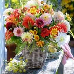 Пазл онлайн: Красивые цветы