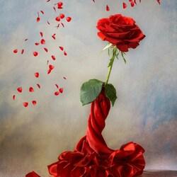 Пазл онлайн: Танец розы