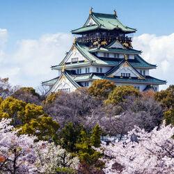 Пазл онлайн: Весна в Осаке
