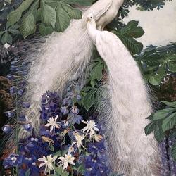 Пазл онлайн: Павлины-альбиносы