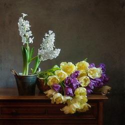 Пазл онлайн: Гиацинты и тюльпаны