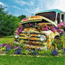 Пазл онлайн: Цветочный автомобиль
