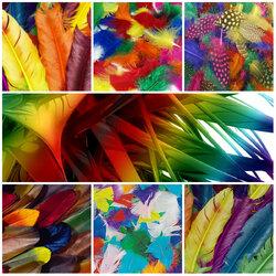 Пазл онлайн: Коллаж из перьев