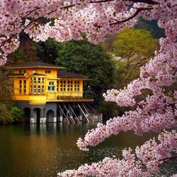 Пазл онлайн: Японский дом