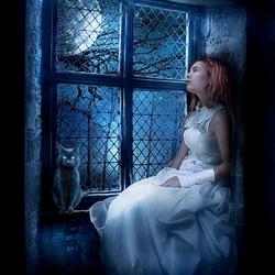 Пазл онлайн: Ночь за окном