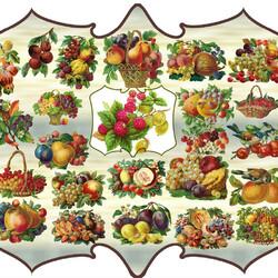 Пазл онлайн: Винтажные фрукты