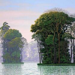 Пазл онлайн: Деревьев шум и плеск волны
