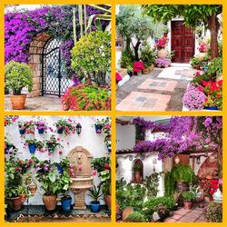Пазл онлайн: Сражение цветов