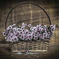 Пазл онлайн: Корзина с хризантемами