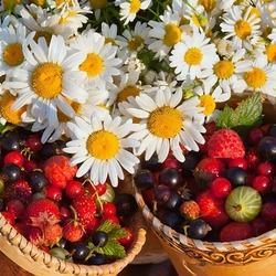 Пазл онлайн: Ромашко-ягодное лето