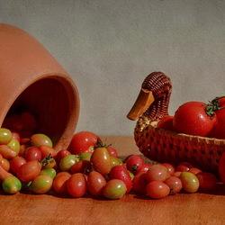 Пазл онлайн: Натюрморт с помидорами
