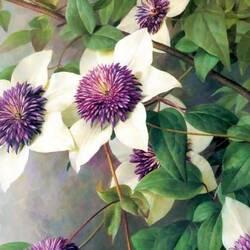 Пазл онлайн: Лесные цветы