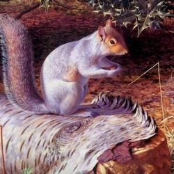 Пазл онлайн: На лесной поляне