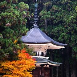Пазл онлайн: Архитектура Японии