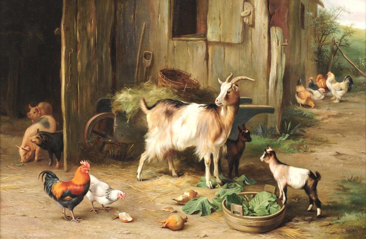 картинка скотный двор домашние животные последнее