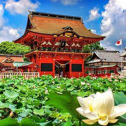 Пазл онлайн: Невероятная красота Японии