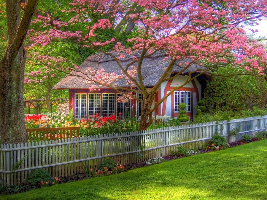 Домик с окнами в сад фото