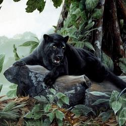 Пазл онлайн: Черная пантера