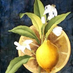 Пазл онлайн: Композиция с лимоном
