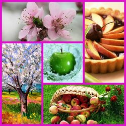 Пазл онлайн: Яблочная композиция