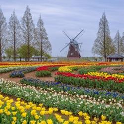 Пазл онлайн: Парк с мельницей