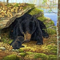 Пазл онлайн: Черные медведи