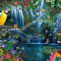 Пазл онлайн: Тропический дождевой лес