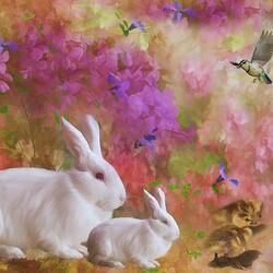 Пазл онлайн: Кролики