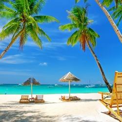 Пазл онлайн: Море, пляж, песок и пальмы