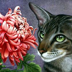 Пазл онлайн: Хризантема