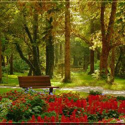 Пазл онлайн: Парк