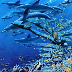 Пазл онлайн: Коралл