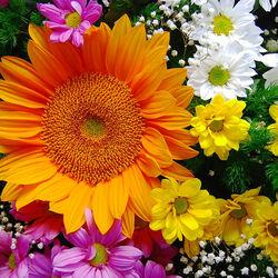 Пазл онлайн: Цветочный калейдоскоп