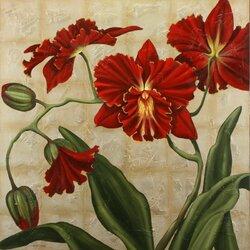 Пазл онлайн: Красные орхидеи