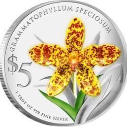 Пазл онлайн: Орхидея Грамматофиллум