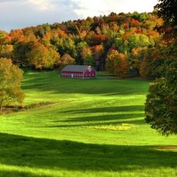 Пазл онлайн: Дом у леса