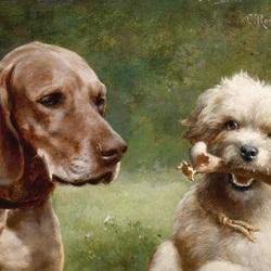 Пазл онлайн: Два пса