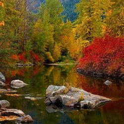 Пазл онлайн: Яркие краски осени