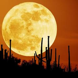 Пазл онлайн: Загадочная луна