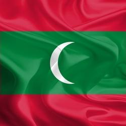 Пазл онлайн: Флаг Мальдивской Республики