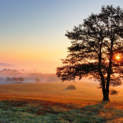 Пазл онлайн: Лучи рассвета