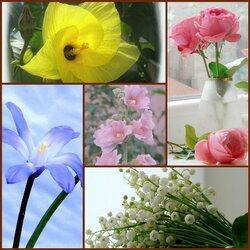 Пазл онлайн: Цветочная нежность
