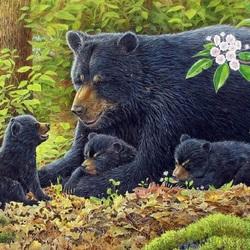 Пазл онлайн: Медведица и медвежата