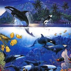Пазл онлайн: Морские обитатели