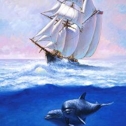 Пазл онлайн: Дельфиниы